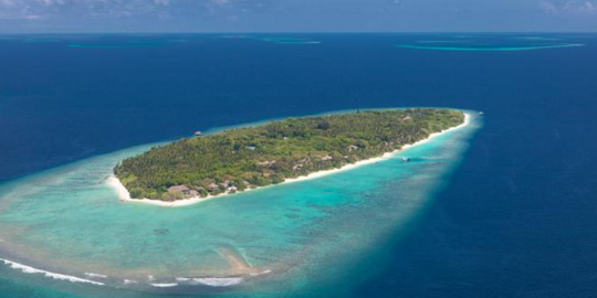 Baa Atoll Festival this Summer 2018 in the Maldives! | The Luxe Diary